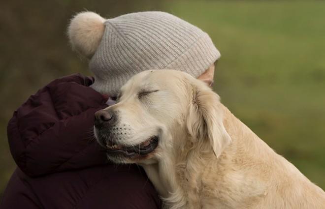 Ảnh chó đẹp nhất năm 2018: Tôn vinh bạn tốt nhất của con người qua những thước phim đầy cảm xúc - Ảnh 6.