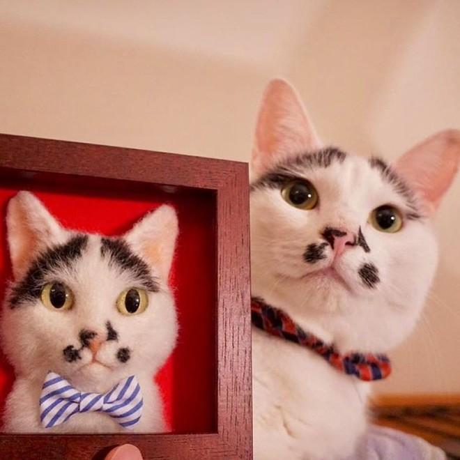 Nghệ sĩ Nhật Bản khiến cư dân mạng trầm trồ vì khả năng tạo hình mèo 3D từ len giống y như mèo thật - Ảnh 5.