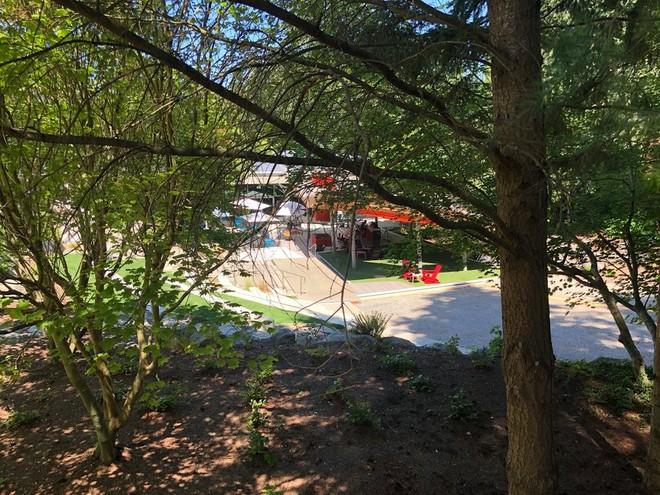 Chiêm ngưỡng ngôi nhà trên cây mà Microsoft làm cho nhân viên: Gặp gỡ, làm việc hay tắm nắng đều được - Ảnh 11.