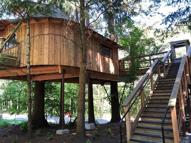 Chiêm ngưỡng ngôi nhà trên cây mà Microsoft làm cho nhân viên: Gặp gỡ, làm việc hay tắm nắng đều được - Ảnh 16.