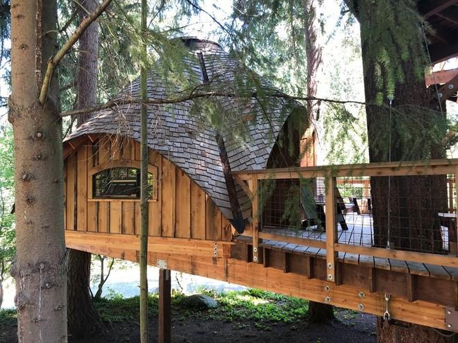 Chiêm ngưỡng ngôi nhà trên cây mà Microsoft làm cho nhân viên: Gặp gỡ, làm việc hay tắm nắng đều được - Ảnh 4.