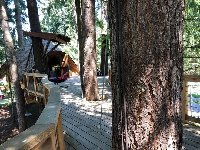 Chiêm ngưỡng ngôi nhà trên cây mà Microsoft làm cho nhân viên: Gặp gỡ, làm việc hay tắm nắng đều được - Ảnh 6.
