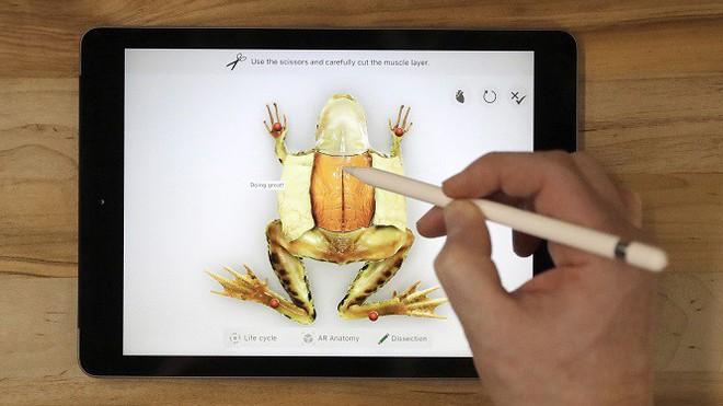 Surface Go giá mềm chính là câu trả lời thích đáng của Microsoft dành cho chiếc iPad 9.7 inch của Apple - Ảnh 1.