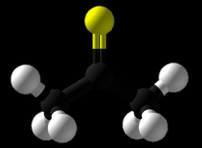 Thioacetone có mùi kinh tởm nhất thế giới: đã từng lan ra khiến người trong bán kính 0,75 km nôn mửa và bất tỉnh, làm cả thành phố sợ quá phải sơ tán - Ảnh 1.