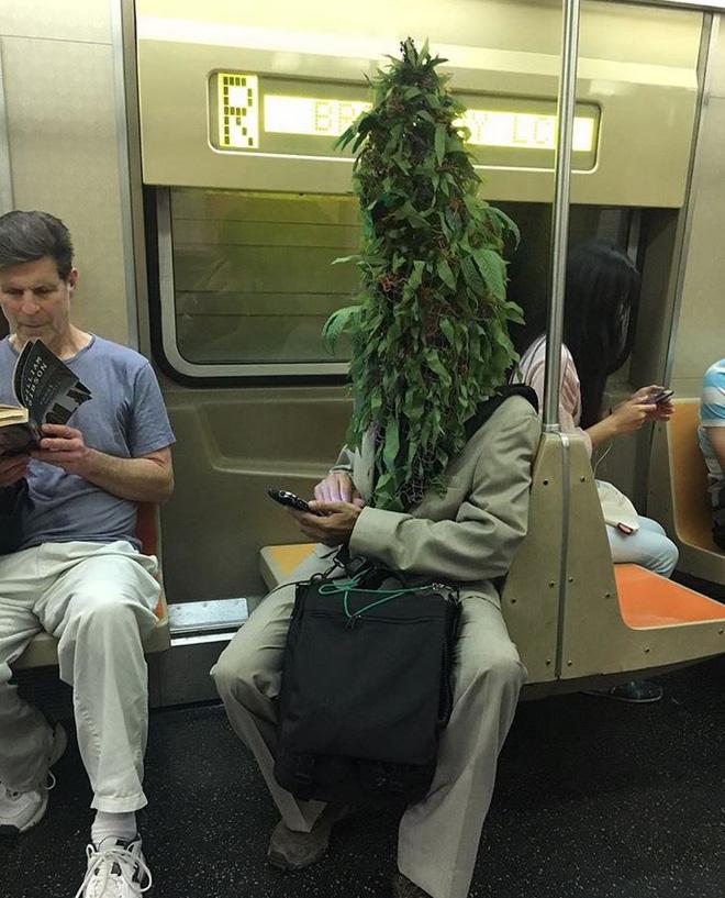 [Vui] 20 bức ảnh sẽ chứng minh cho bạn thấy: Thế giới trên tàu điện ngầm luôn ngập tràn những điều kỳ lạ - Ảnh 1.