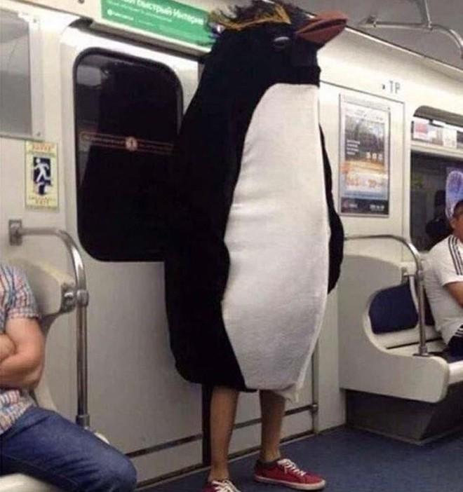 [Vui] 20 bức ảnh sẽ chứng minh cho bạn thấy: Thế giới trên tàu điện ngầm luôn ngập tràn những điều kỳ lạ - Ảnh 2.