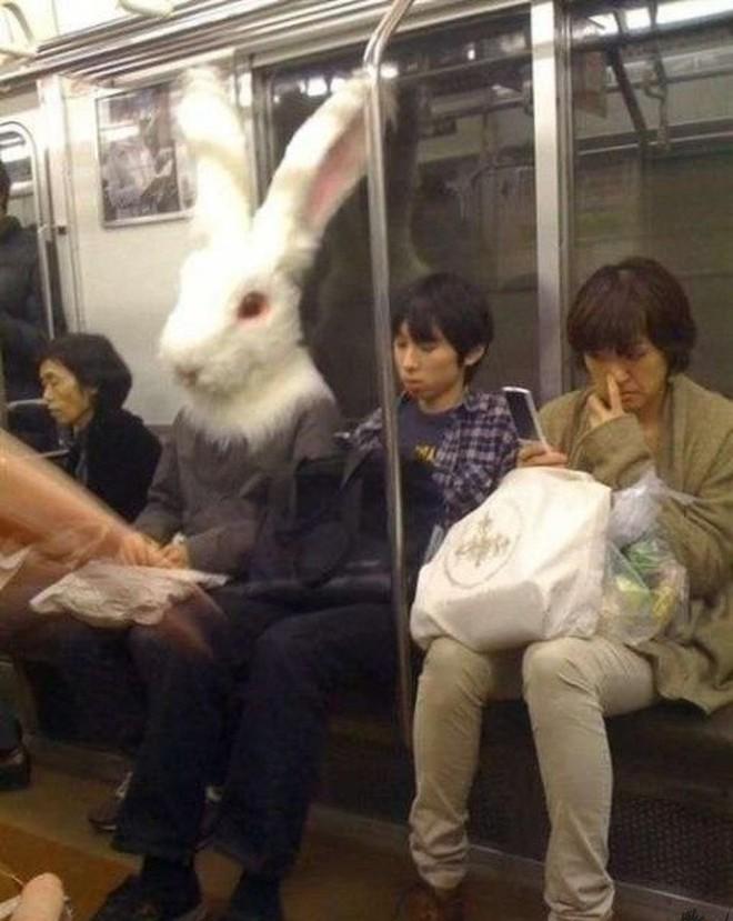 [Vui] 20 bức ảnh sẽ chứng minh cho bạn thấy: Thế giới trên tàu điện ngầm luôn ngập tràn những điều kỳ lạ - Ảnh 15.