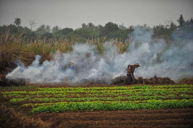 Trung Quốc: Lắp 4339 camera an ninh để ngăn chặn nông dân đốt rơm gây ô nhiễm môi trường - Ảnh 1.