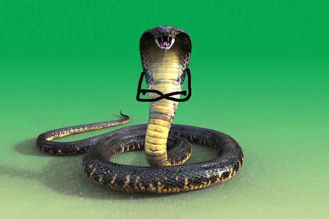 Vẽ rắn thêm chân quả là ngớ ngẩn nhưng vẽ rắn thêm tay lại hay biết mấy - Ảnh 7.