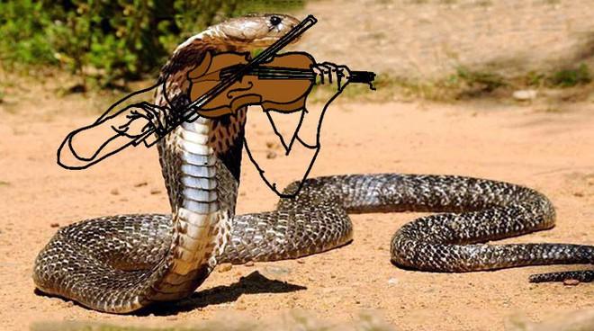 Vẽ rắn thêm chân quả là ngớ ngẩn nhưng vẽ rắn thêm tay lại hay biết mấy - Ảnh 11.