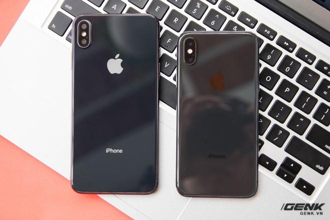 Trên tay mô hình iPhone X Plus đầu tiên tại VN và so sánh với iPhone X - Ảnh 6.