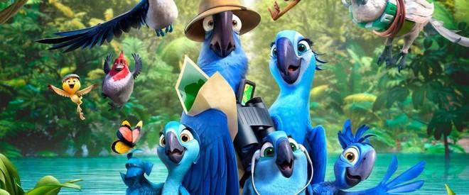 Đau lòng: Giống vẹt xanh đuôi dài làm nguồn cảm hứng cho bộ phim Rio đã chính thức bị tuyệt chủng ngoài thiên nhiên - Ảnh 2.