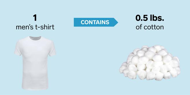 Từ đường viên cho tới iPhone, đây là lượng nguyên liệu thô để tạo ra 9 sản phẩm quen thuộc - Ảnh 4.