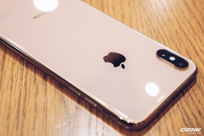 iPhone XS Max đầu tiên về Việt Nam trước cả khi Apple mở bán, giá từ 33.9 triệu đồng - Ảnh 7.