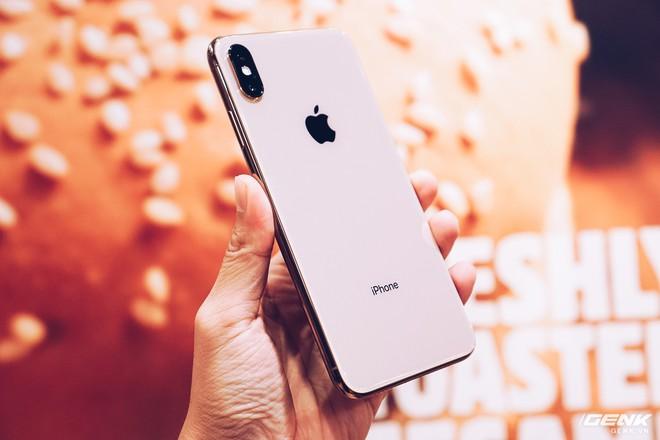 iPhone XS Max đầu tiên về Việt Nam trước cả khi Apple mở bán, giá từ 33.9 triệu đồng - Ảnh 4.