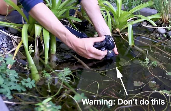 Mẹo chụp ảnh dưới nước: tưởng khó hóa ra quá dễ! - Ảnh 3.
