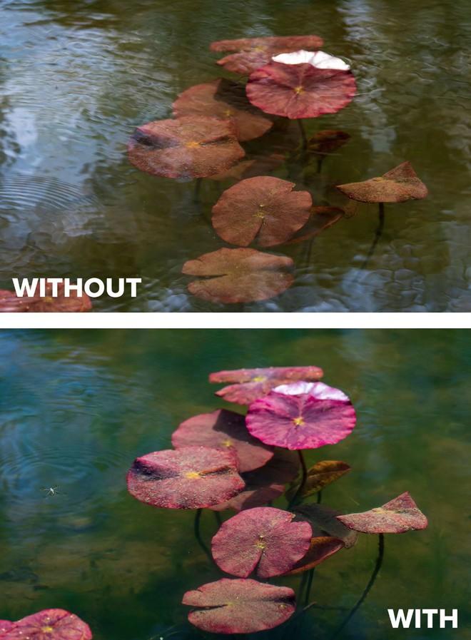 Kính phân cực trong nhiếp ảnh: Khi nào dùng và cách dùng như thế nào? - Ảnh 5.