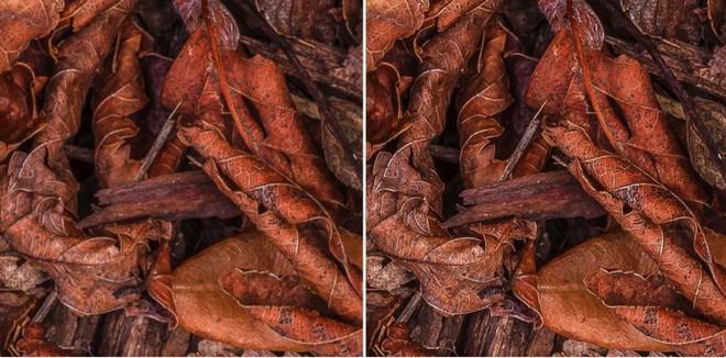 8 mẹo nhỏ giúp bạn chụp được những bức ảnh nét đứt tay - Ảnh 1.