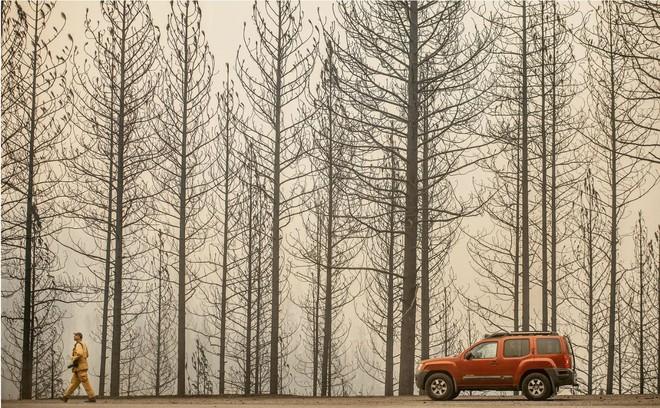 Tình bạn thử lửa: Những nhiếp ảnh gia nơi tiền tuyến địa ngục lửa - Ảnh 35.