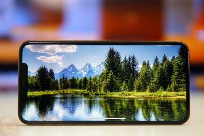 Apple sẽ đánh đổi chi phí lấy chất lượng hiển thị khi chuyển 100% iPhone dùng màn LCD sang OLED vào năm 2020? - Ảnh 2.