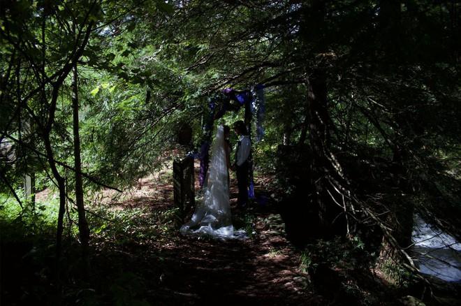 Dẫn Gấu đi chụp ảnh Tết mà gặp phải bối cảnh ánh sáng loang lổ thì xử lý ra sao? - Ảnh 1.