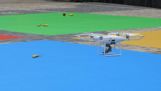 DJI hợp tác Microsoft tạo ra AI drone có thể nhận diện hoa quả và nhiều thứ khác nữa - Ảnh 4.