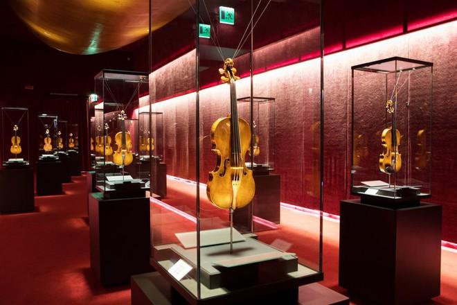Để cứu âm thanh của những cây đàn vô giá, một thành phố của Ý phải im thin thít trong 5 tuần - Ảnh 3.
