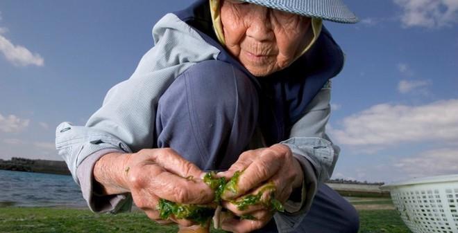 Tại sao người dân ở hòn đảo này sống trên 100 tuổi mà vẫn rất khỏe mạnh? - Ảnh 2.
