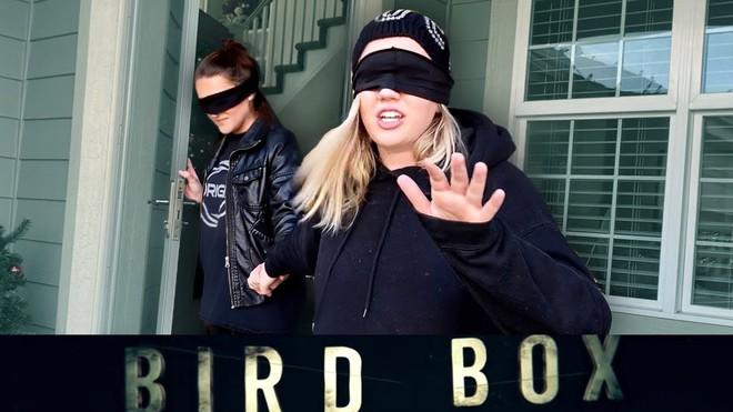Bird Box Challenge là gì và lý do Netflix yêu cầu người hâm mộ tuyệt đối không nên bắt chước - Ảnh 3.