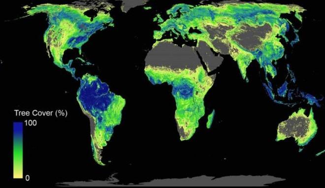 Lần đầu tiên xuất hiện báo cáo khoa học hướng dẫn cần bao nhiêu đất, trồng bao nhiêu cây thì đủ để cứu lấy Trái Đất - Ảnh 2.