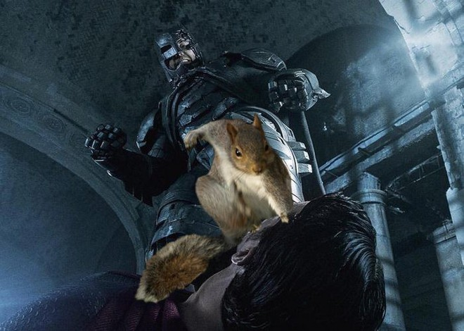 Nhìn các thánh photoshop chế hình chú sóc với dáng đứng bá đạo, ta mới thấy trí tưởng tượng của con người là vô biên - Ảnh 13.