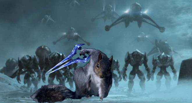 Nhìn các thánh photoshop chế hình chú sóc với dáng đứng bá đạo, ta mới thấy trí tưởng tượng của con người là vô biên - Ảnh 11.
