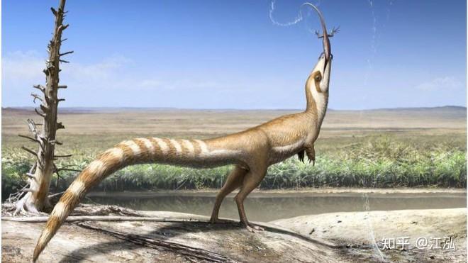 Rốt cuộc thì khủng long có màu sắc như thế nào? - Ảnh 6.