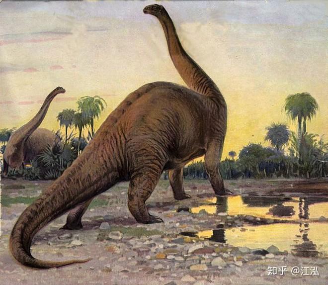 Rốt cuộc thì khủng long có màu sắc như thế nào? - Ảnh 2.