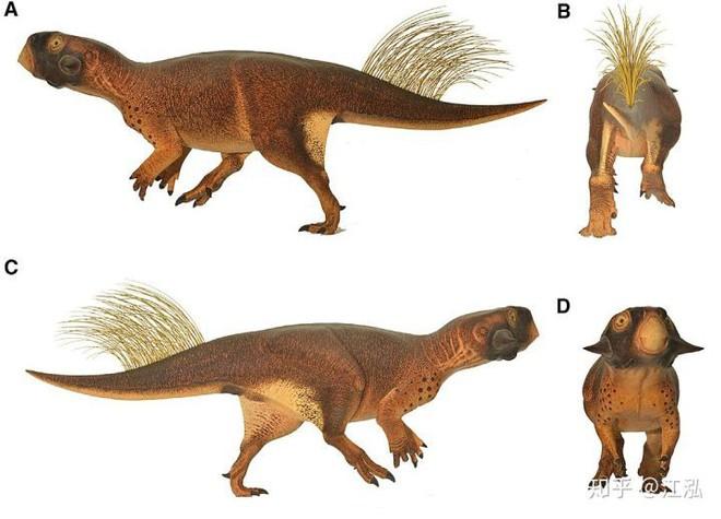Rốt cuộc thì khủng long có màu sắc như thế nào? - Ảnh 15.