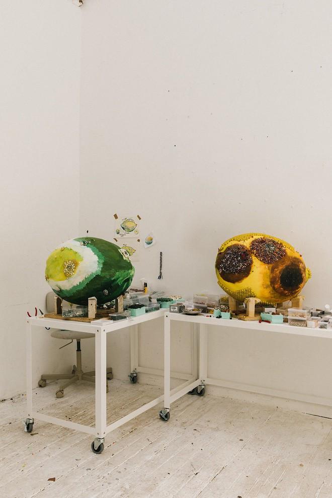 Nghệ sĩ Kathleen Ryan chứng minh cho ta thấy hoa quả thối cũng có vẻ đẹp riêng - Ảnh 3.