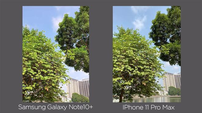 Thêm bài so camera giữa Galaxy Note10+ và iPhone 11 Pro Max ở nhiều điều kiện khác nhau - Ảnh 4.