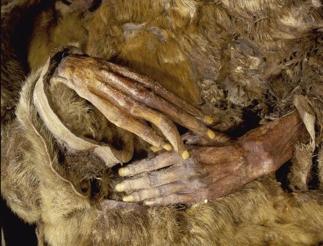Phát hiện xác ướp em bé 6 tháng tuổi còn nguyên vẹn sau hơn 500 năm bị đóng băng - Ảnh 2.