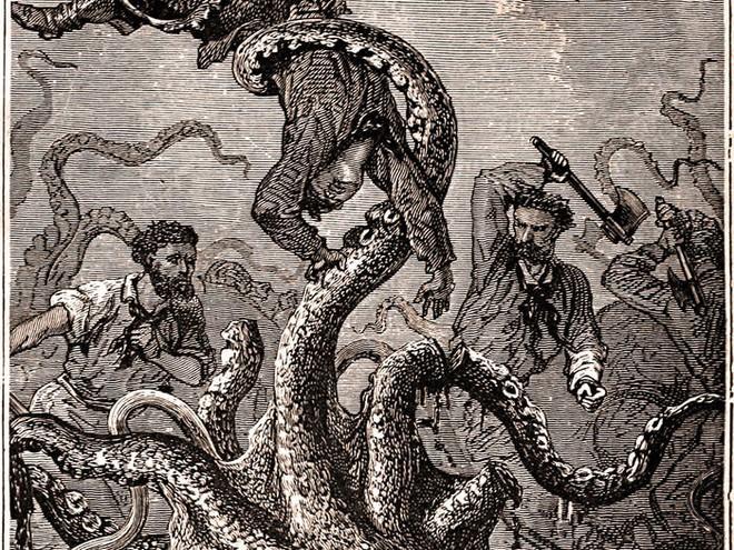 Loài mực khổng lồ có thể đánh chìm thuyền bè tưởng chỉ có trong truyền thuyết và bí ẩn 150 năm mới có lời giải - Ảnh 1.