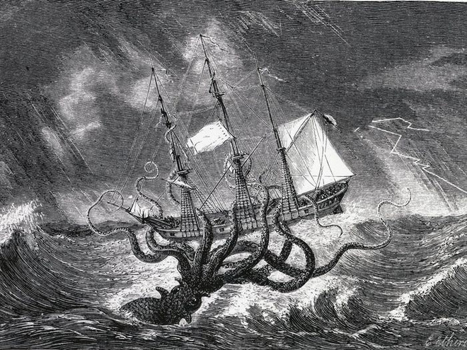 Loài mực khổng lồ có thể đánh chìm thuyền bè tưởng chỉ có trong truyền thuyết và bí ẩn 150 năm mới có lời giải - Ảnh 2.
