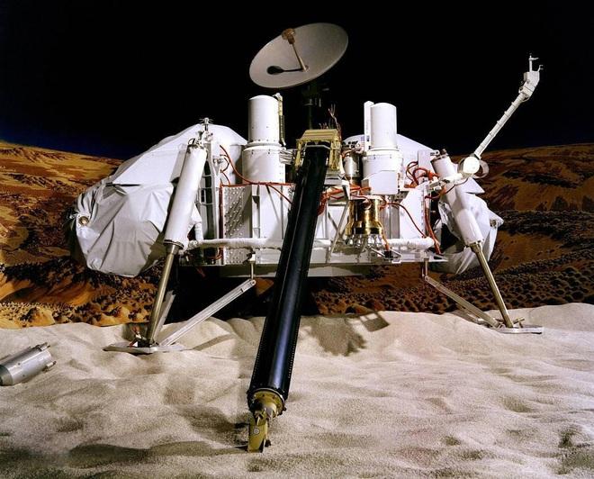 Cựu khoa học gia của NASA tuyên bố tìm thấy côn trùng sống trên Sao Hỏa - Ảnh 1.
