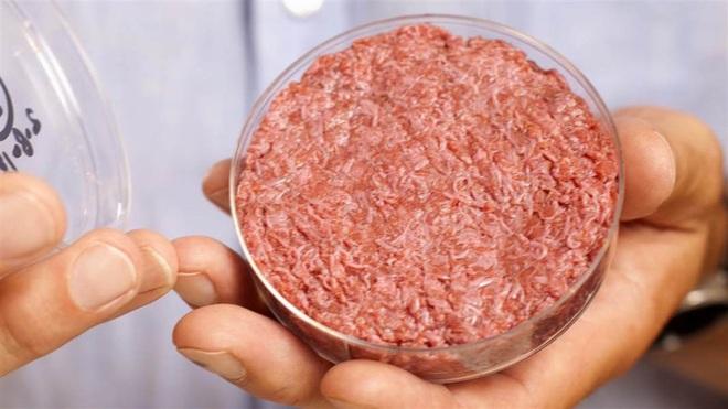 Làm ra thịt từ không khí: Nghe qua tưởng vô lý nhưng khoa học đã thực hiện thành công điều không tưởng này - Ảnh 3.