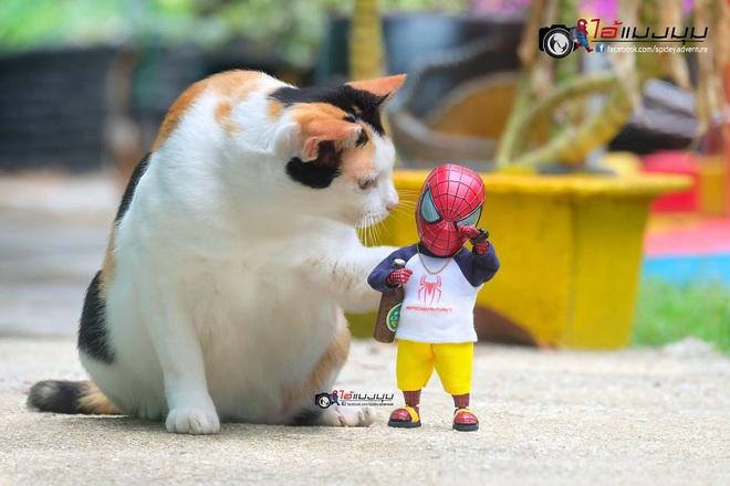 Cưng muốn xỉu với bộ ảnh chuyến phiêu lưu của boss mèo và sen Spider-Man - Ảnh 10.