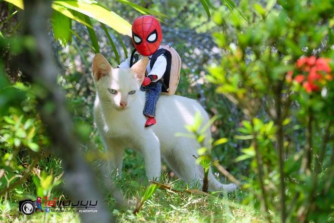 Cưng muốn xỉu với bộ ảnh chuyến phiêu lưu của boss mèo và sen Spider-Man - Ảnh 11.