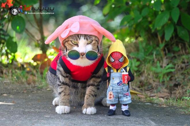 Cưng muốn xỉu với bộ ảnh chuyến phiêu lưu của boss mèo và sen Spider-Man - Ảnh 12.