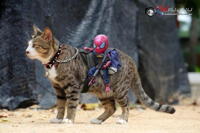 Cưng muốn xỉu với bộ ảnh chuyến phiêu lưu của boss mèo và sen Spider-Man - Ảnh 19.