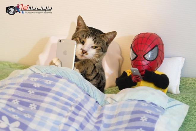 Cưng muốn xỉu với bộ ảnh chuyến phiêu lưu của boss mèo và sen Spider-Man - Ảnh 2.