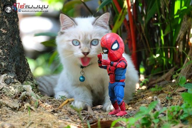 Cưng muốn xỉu với bộ ảnh chuyến phiêu lưu của boss mèo và sen Spider-Man - Ảnh 21.