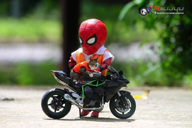 Cưng muốn xỉu với bộ ảnh chuyến phiêu lưu của boss mèo và sen Spider-Man - Ảnh 24.