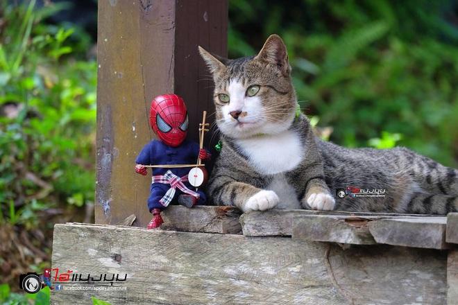 Cưng muốn xỉu với bộ ảnh chuyến phiêu lưu của boss mèo và sen Spider-Man - Ảnh 27.